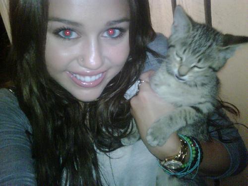 სლეებრითებს უყვართ კატები
